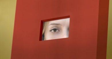 Need FullVision? : Mirror