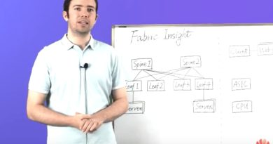 The Fabric Insight – a Big Data Network Analyser of Huawei CloudFabric
