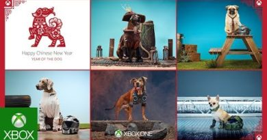 Introducing the Xbox CosPups