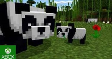 Cats & Pandas now together in Minecraft!