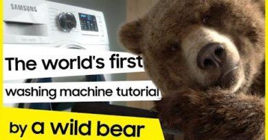 EcoBubble™ Washing Machine: Laundry hacks by a wild bear│Samsung