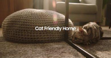 Samsung Jet™: Cat friendly home